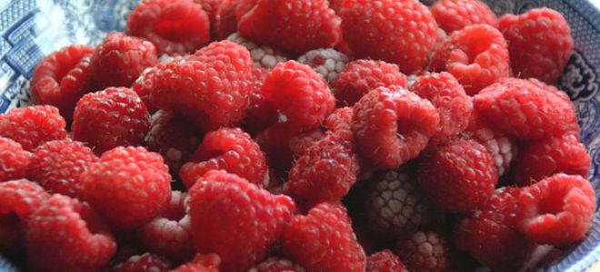 Ликёр из ягод в домашних условиях простой рецепт 79