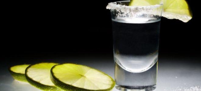 Чем закусывать и как правильно пить текилу?
