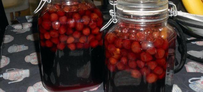 Ликер из вишни в домашних условиях простой рецепт