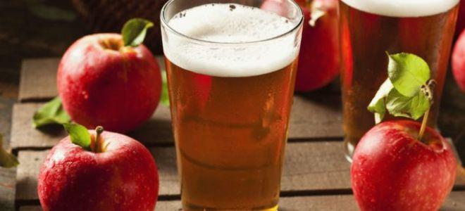 Как из яблок сделать самогон в домашних условиях
