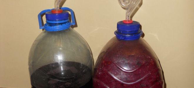 Как сделать наливку из винограда в домашних условиях